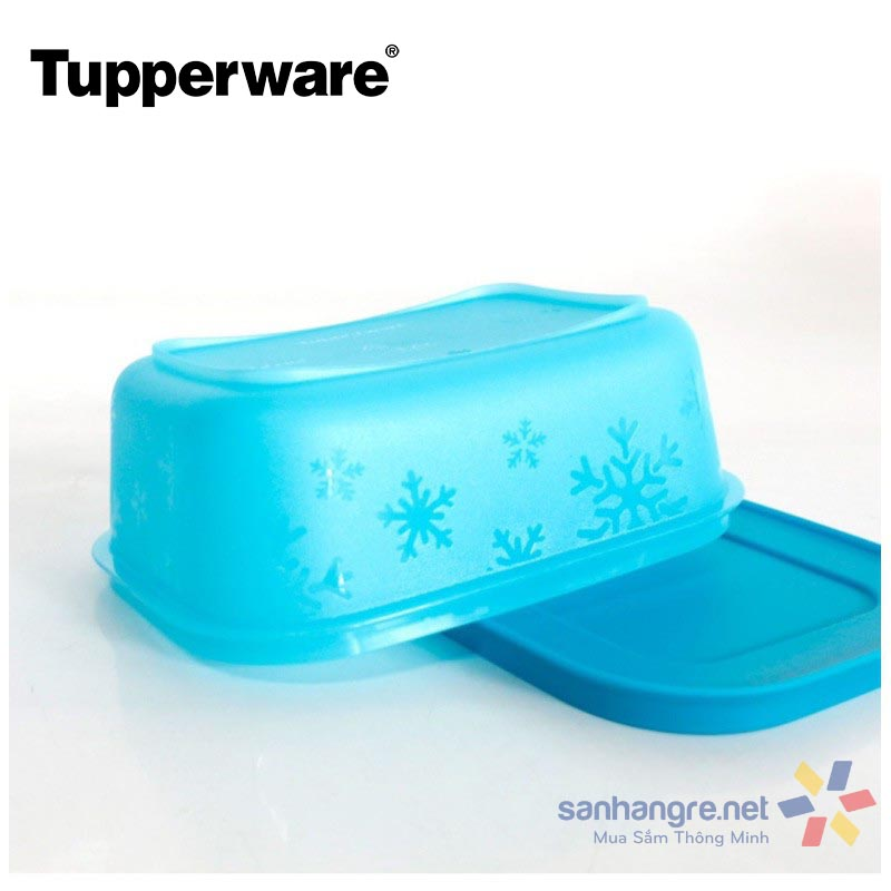 Bộ hộp trữ đông Tupperware Freezermate Gen II 450ml