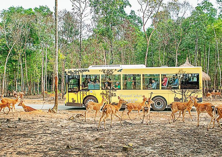 Voucher Vinpearl Safari - Công viên Chăm sóc và Bảo tồn Động vật trên đảo Phú Quốc